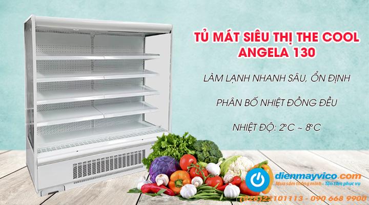 Tủ mát siêu thị The Cool ANGELA 130  có thiết kế bền đẹp, hiện đại, giúp trưng bày và bảo quản thực phẩm tốt