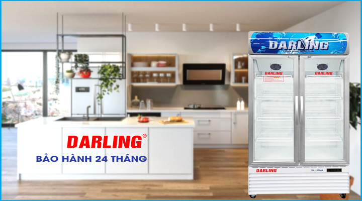 Hình ảnh Tủ đông Darling DL-7000A