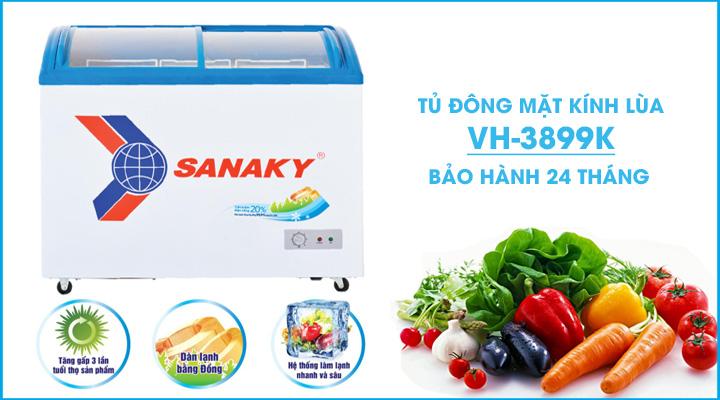 Hình nội dung Tủ đông kính cong Sanaky VH-3899K