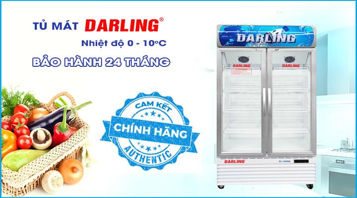 Hình nội dung Tủ đông Darling DL-9000A