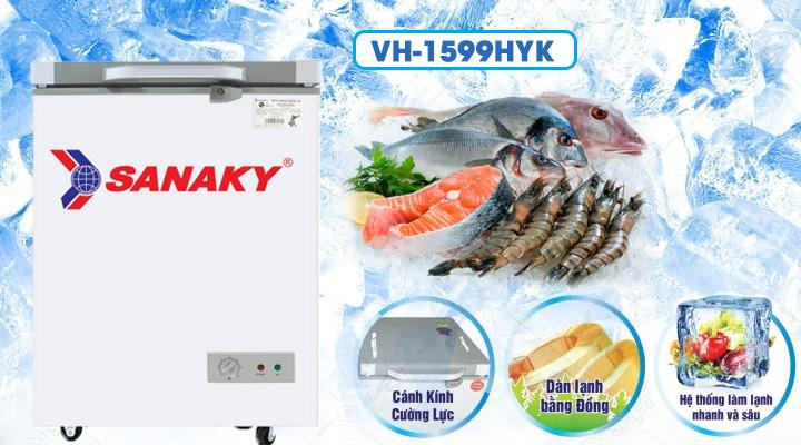 Tủ đông kính cường lực Sanaky VH-1599HYK 100 lít