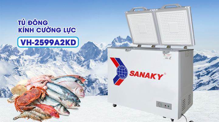 Tủ đông kính cường lực Sanaky VH-2599A2KD 208 lít